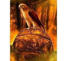 Hawk Spirit Photographic Print