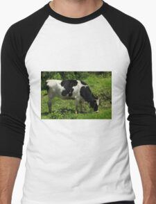Holstein Cow in a Farmers Pasture Men's Baseball ¾ T-Shirt