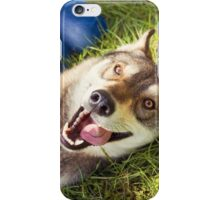 Siberian Husky dog Funny Portrait  iPhone Case/Skin