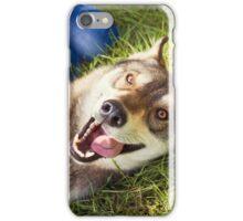 Siberian Husky dog Funny Portrait  iPhone Case/Skin