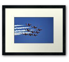 Snowbirds Framed Print