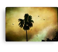 Palm tree and vultures Canvas Print