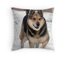 Grandpa's Best Friend Throw Pillow