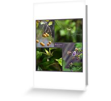 Backyard Beauty Greeting Card