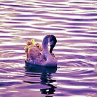 Swan Song by Skyeblux