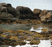 Rocks at low tide by BigAndRed