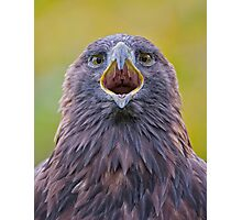 Are You looking at Me! Photographic Print