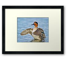 Flapping Away Framed Print