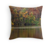 House by the Lake Throw Pillow