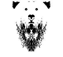 Rorschach Bear Photographic Print