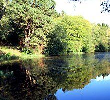 Middle Lake - Ampleforth by Merice Ewart Marshall - LFA