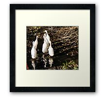 Six Little puddle ducks... Framed Print