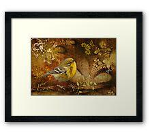 Warbler in Wonderland Framed Print