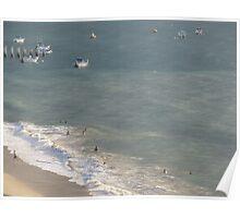 Enjoying the surf and the evening - disfrutando las olas y la tarde/Puerto Vallarta/Mexico Poster