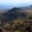 pike o bliscoe by Ilapin