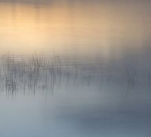 Poetic morning... by Gisele Bedard