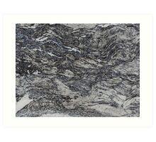 Silver Birch Bark Rubbing Art Print