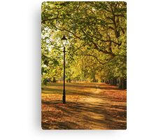 Autumn in the Common Canvas Print