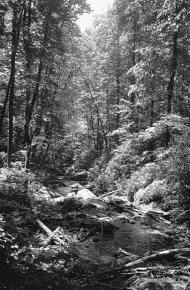 Anna Ruby Fall's Creek - Georgia by glennc70000
