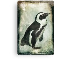 Penguin On Ice Canvas Print