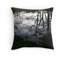 Haldon Forest, Devon Throw Pillow