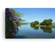 tweed river ... Canvas Print