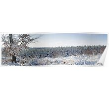 Winter Panorama Poster