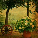 Italian Vintage Landscapes by Deborah Downes