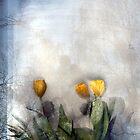 Artscape,  Flowers behind the Window by Imi Koetz
