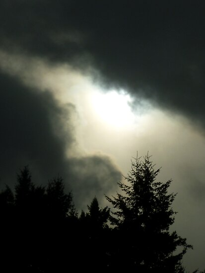 Stormy weather over the Olympics  by Elaine Bawden
