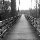 Boardwalk in Black and White by CatKV