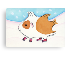 Guinea-pig With Stripy Socks in the Snow Canvas Print