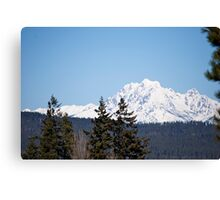 Eastern Washington Snow Obstacles  Canvas Print