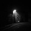 Street Light 2 by crazyman53