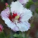 *Hibiscus Impression* by DeeZ (D L Honeycutt)