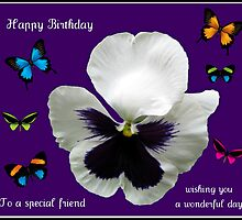 Fun Birthday Card with Pansy and Butterflies by MidnightMelody