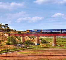 Train Crossing the Railway Viaduct at Murray Bridge, South Australia by Mark Richards