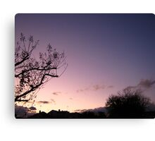 Cold Winter Sky 5 Canvas Print