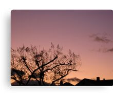 Cold Winter Sky 8 Canvas Print