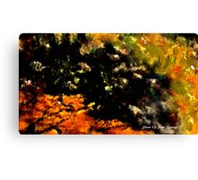 abstract zen garden Canvas Print