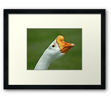 Grass Eater Framed Print