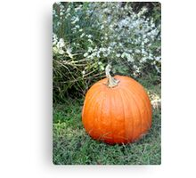 Season of Harvest 2 Metal Print