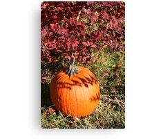 Season of Harvest 1 Canvas Print