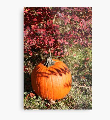 Season of Harvest 1 Metal Print
