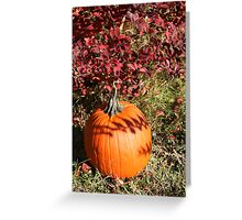 Season of Harvest 1 Greeting Card