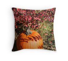 Season of Harvest 1 Throw Pillow