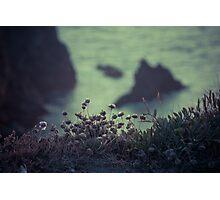 Belle-ile, falaise Photographic Print