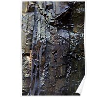 Vertical lines in rock face Poster