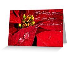 Sparkling poinsettias - card Greeting Card