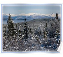 White Mountains - Interior Alaska  Poster